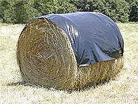 picture: hay round bale bonnets